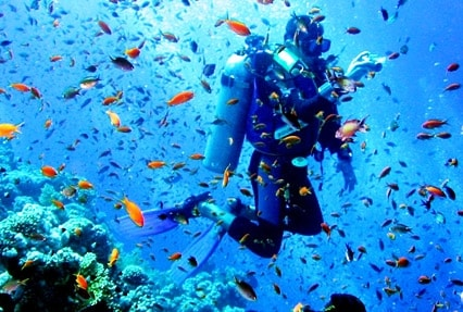 4 Nights 5 Days Andaman holiday packages