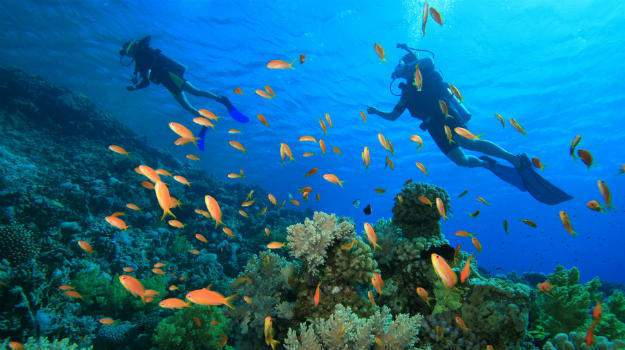 5 Nights 6 Days Andaman holiday packages