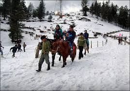 5 Nights 6 Days Himachal holiday packages