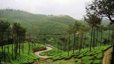 5 Nights 6 Days Kerala tour packages