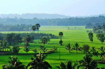 5 Nights 6 Days Kerala honeymoon packages