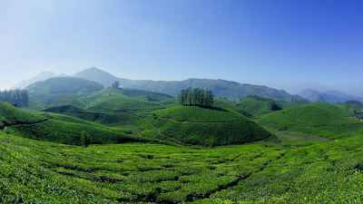 Thekkady honeymoon packages