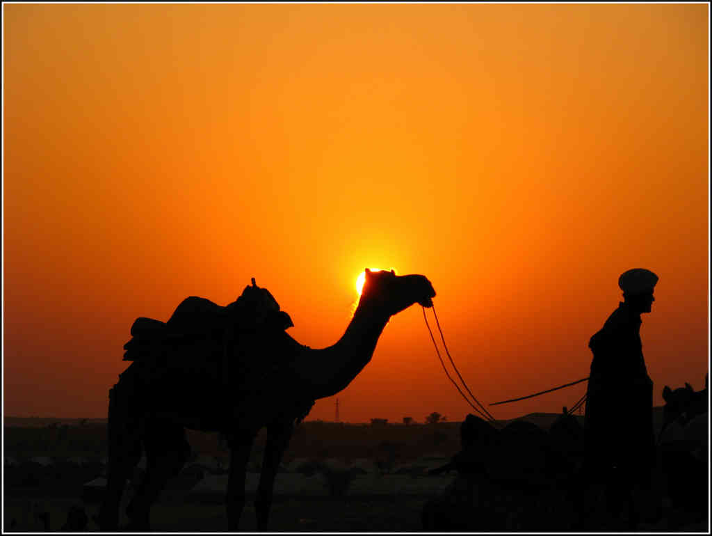 Night  Day Rajasthan  honeymoon packages